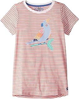 Coral Stripe Parrot