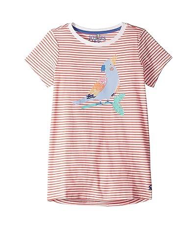 Joules Kids Astro T-Shirt (Toddler/Little Kids/Big Kids) (Coral Stripe Parrot) Girl