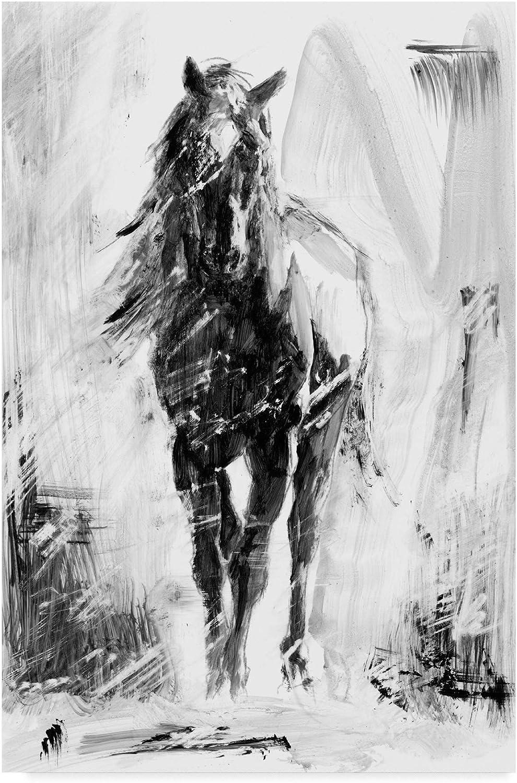 Trademark Fine Art Rustic Stallion II by Ethan Harper, 12x19