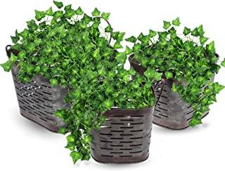 Set of 3 Galvanized Metal Square Olive Planters - Includes 3 Artificial Ivy Leaf Garlands - Beautiful Distressed Metal Buckets Table Décor for Air Plants, Faux Plants, Cacti or Vines