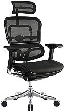 Eurotech Seating Ergo Elite High Back Chair, Black