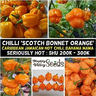 Chilli Jamaican Orange Scotch Bonnet 10 Seeds Chili Spring Vegetable Garden Easy