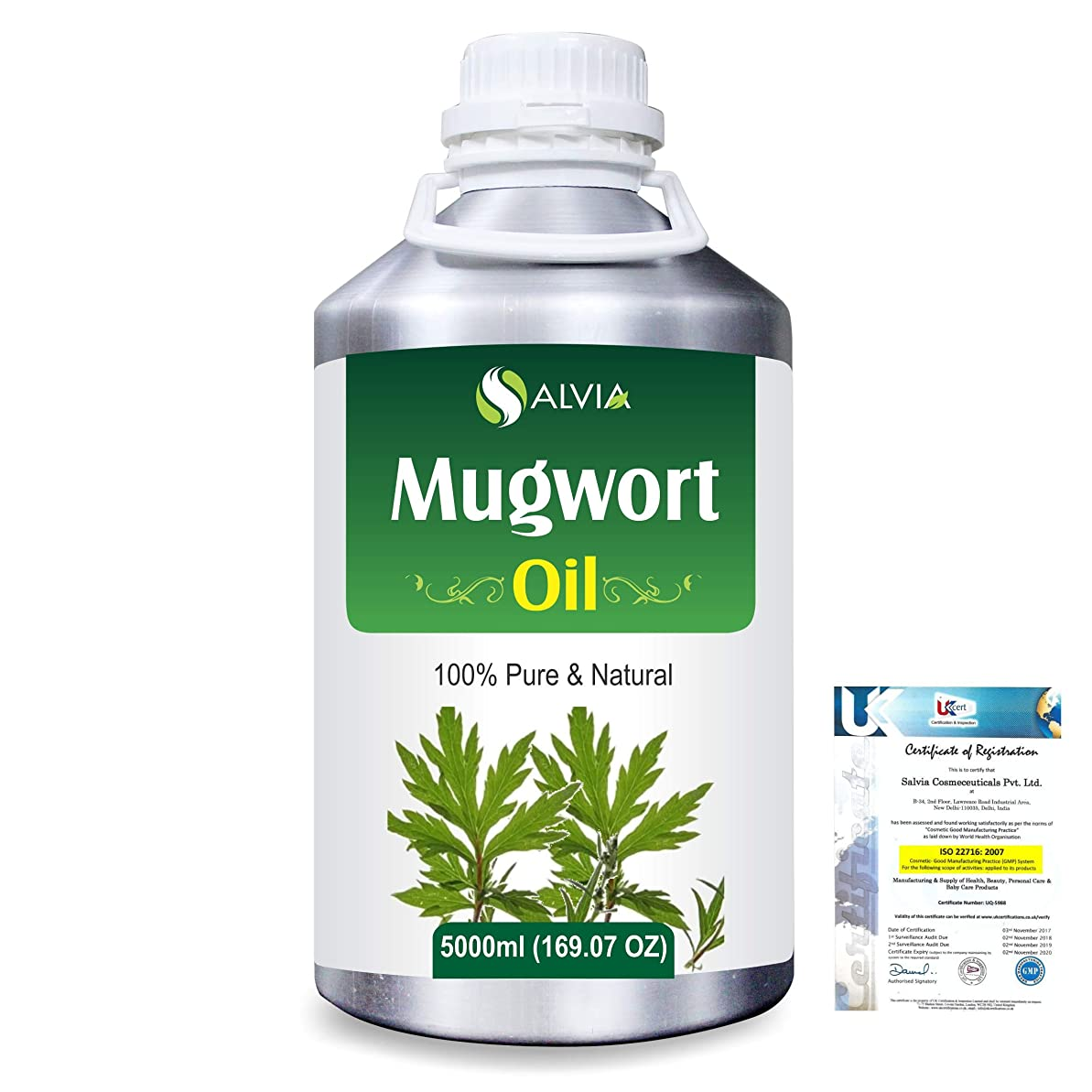 権限どちらも肉屋Mugwort (Artemisia vulgaris) 100% Natural Pure Essential Oil 5000ml/169fl.oz.