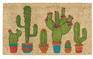 Best DII Indoor/Outdoor Natural Coir Fiber Spring/Summer Doormat, 18x30, Cactus Review