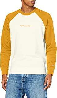 Champion Men's Seasonal Raglan Sweatshirt