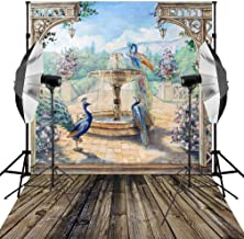 Kooer 6X9ft Fairy tale Backdrop Playground Sightseeing Peacock Flower Fountain Photography Bacground for Studio Props