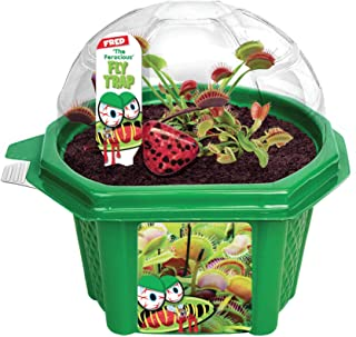 Grow Your Own Venus Fly Trap - Fun and Easy to Grow Franki