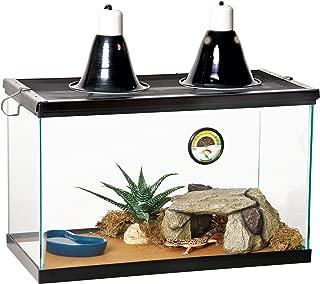 desert reptile decor kit