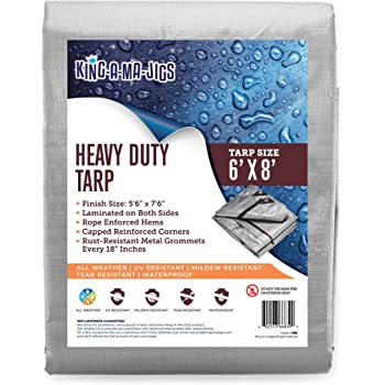 AITREASURE 6.5ft/×13ft Tarpaulin Transparent Waterproof Clear Tarps with Grommets 14 Pieces Ball Bungee Cords 6 Inch for Plants Greenhouse Pet Hutch Roof