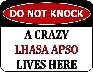 Best crazy lhasa apso Reviews