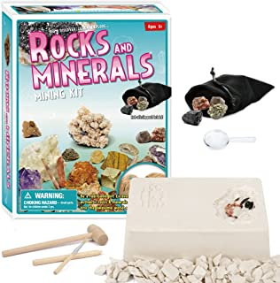 Rock and Minerals Dig Kit Rock Collection Excavation Kits Archaeology Paleontology Educational Science Gift for Girls and ...