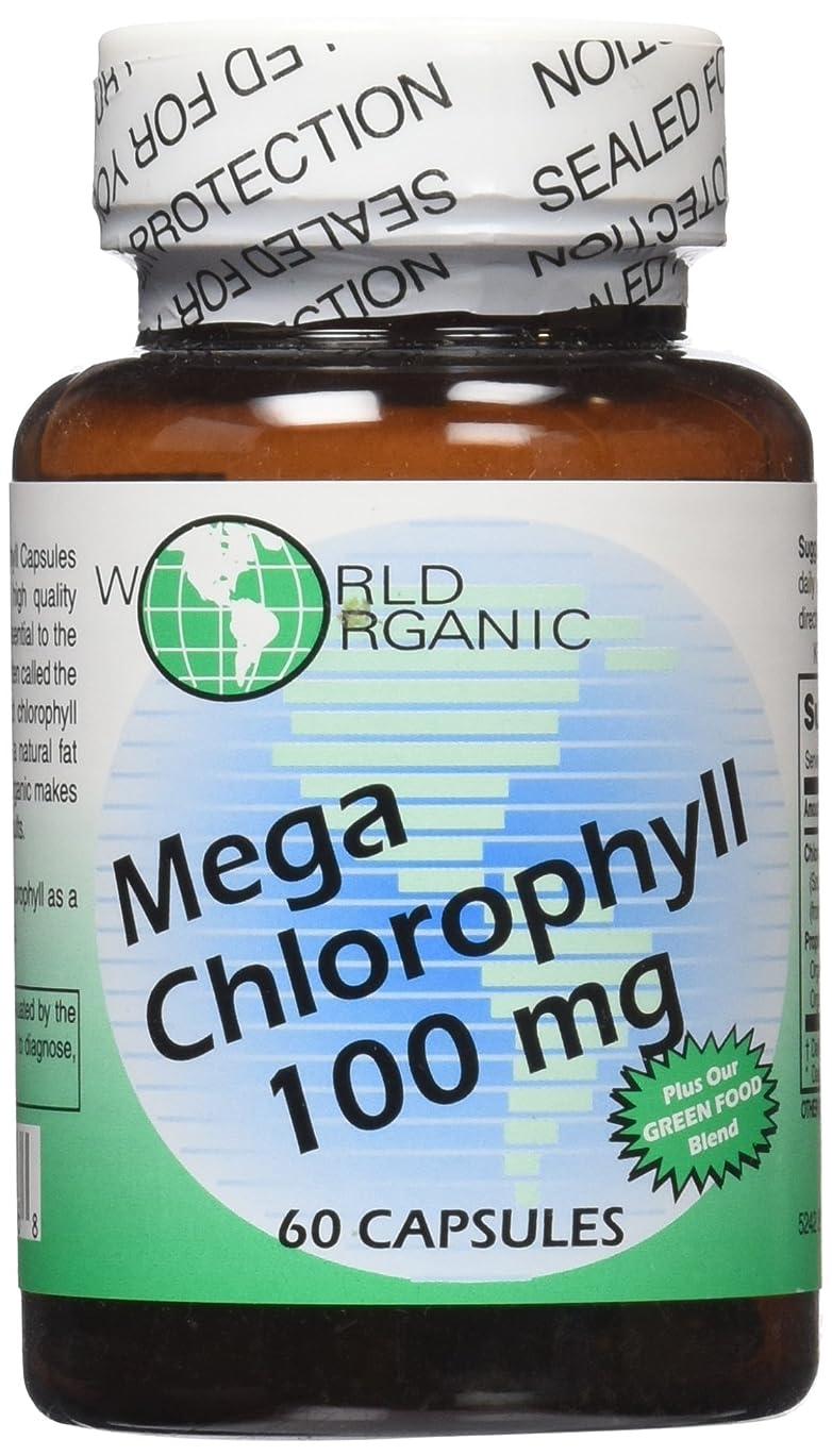 封建ラベ二十海外直送品World Organics Chlorophyll, 100 Caps 60 MG