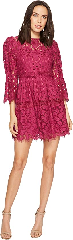 Laundry by Shelli Segal Mock Neck Lace Dress with Scallop Hem