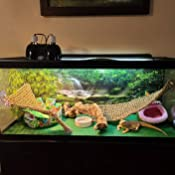 Various Sizes Waterfall /& Mossy Rock Reptile Habitat Sunny with Green Trees Terrarium Background