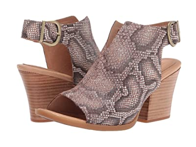 Born Moraine (Brown Snake Print) High Heels