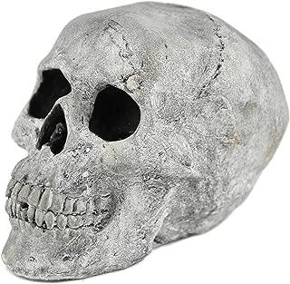 Best halloween fire pit skulls Reviews