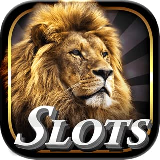Best wild casino slots Reviews