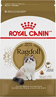 Royal Canin Ragdoll Breed Adult Dry Cat Food