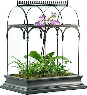 Terrarium Large Glass Succulent Planter Wardian Case Container for Plants from H Potter WAR150