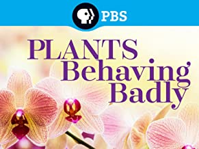 plants behaving badly david attenborough