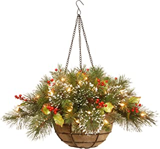 National Tree 20 Inch Wintry Pine Hanging Basket with Branch Sprigs, Red Berries, Cones and 35 Battery Operated Warm White LED Lights (WP1-388-20HB-1)