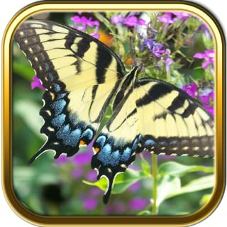 free butterfly jigsaw puzzles