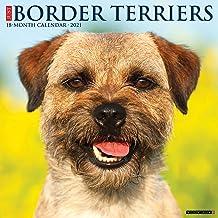Just Border Terriers 2021 Wall Calendar (Dog Breed Calendar)