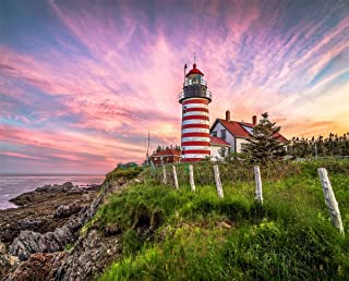 Springbok Puzzles - West Quoddy Head Lighthouse - 1000 Piece Jigsaw Puzzle - Large 30 Inches by 24 Inches Puzzle - Made in...