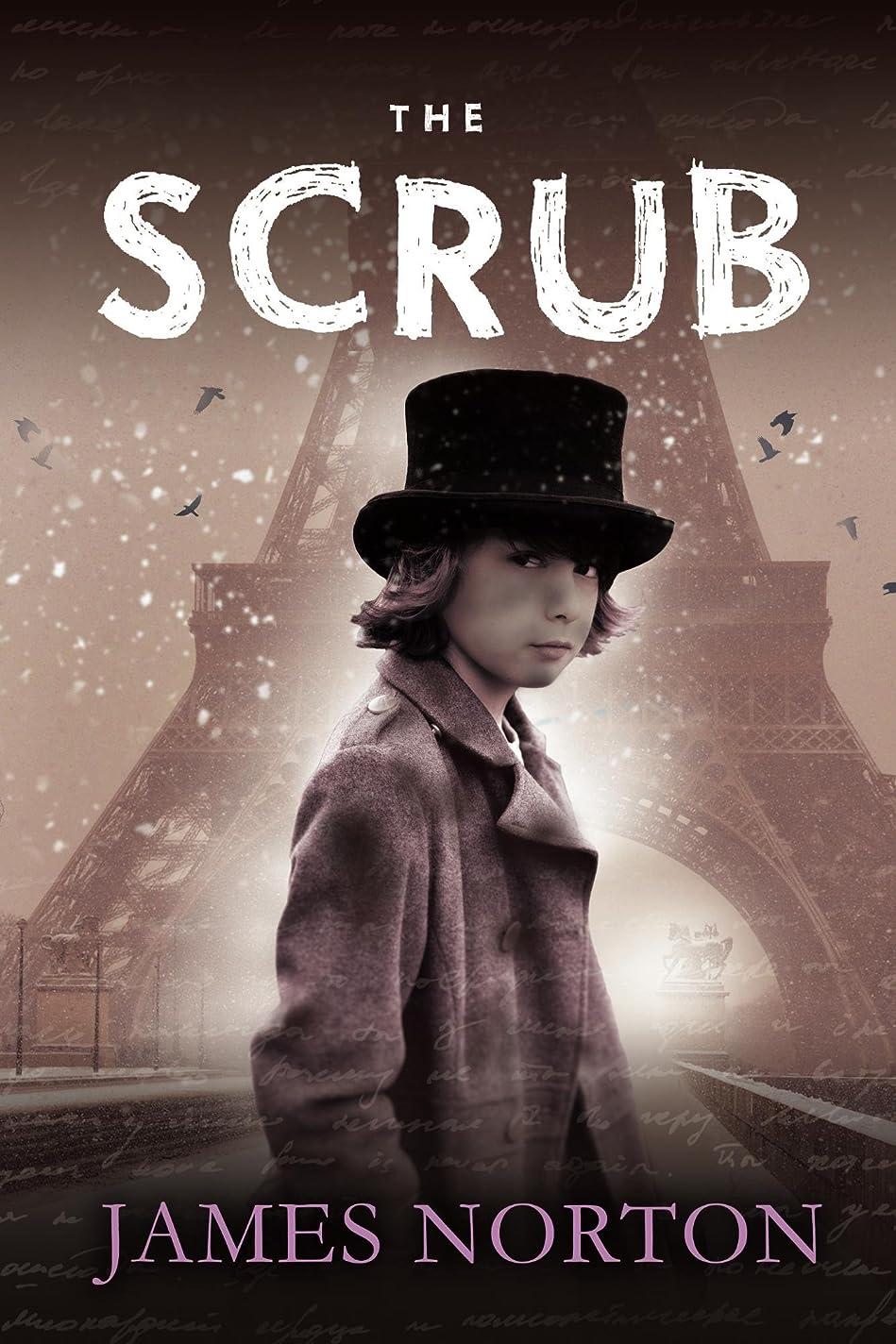 弾薬噴火複雑でないThe Scrub (The Ringbook Trilogy 1) (English Edition)