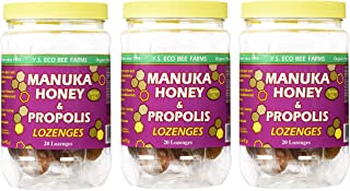 Y.S. Organic Bee Farms Manuka Honey and Propolis - 20 Lozenges (Pack of 3)