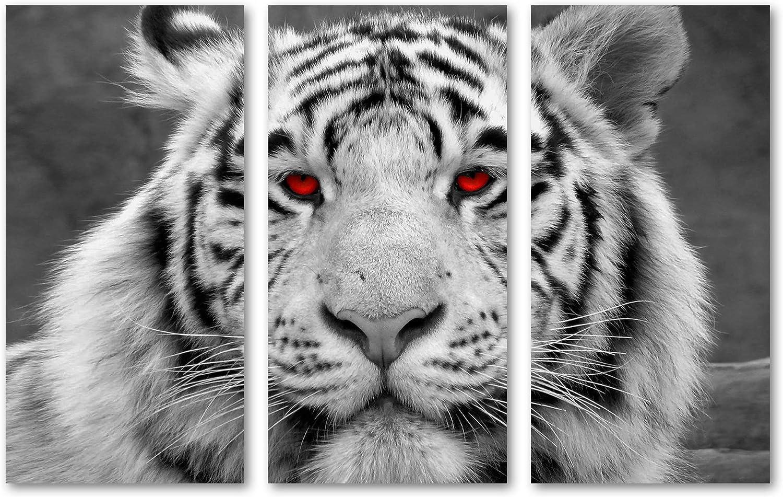 White Tiger avec Réflexion Lot de 4 sets de table et Sous-verre