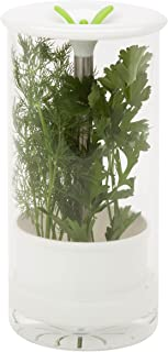 Honey-Can-Do KCH-06398 Glass Herb Preserver, Clear/White