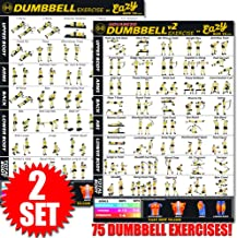 Eazy How To Dumbbell Set Exercise Workout Banner Poster BIG 28 X 20