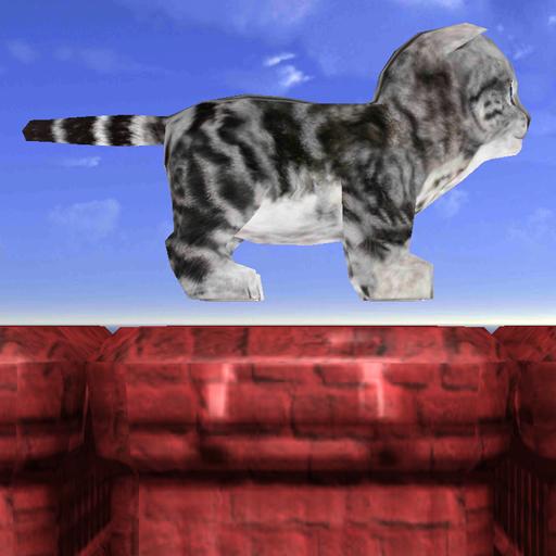 Run Cute Kitty