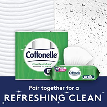 Cottonelle GentlePlus Flushable Wet Wipes with Aloe & Vitamin E - 1 Flip-Top Pack (42 Total Flushable Wipes)