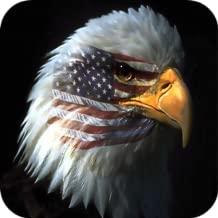 Backyard Birds Of America - Kindle