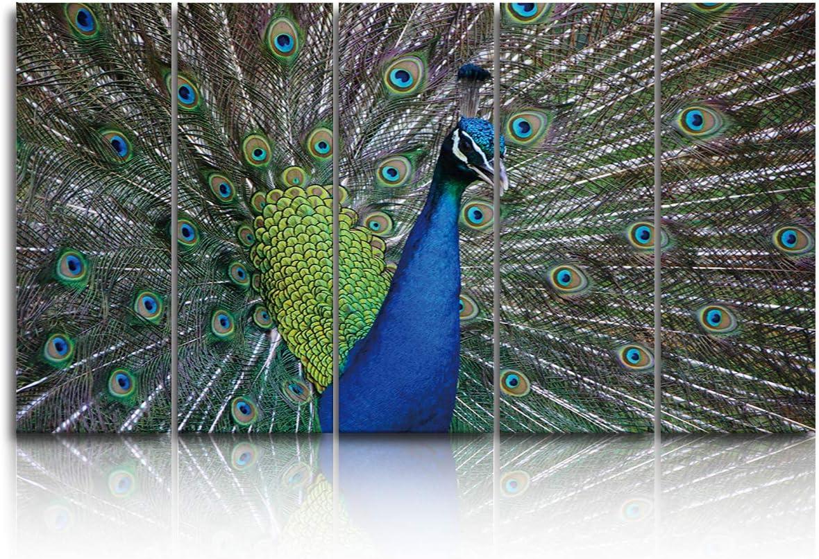 EZON-CH 5 Panels Canvas Wall Art Peacock - Large Prints Extra 秀逸 卸売り