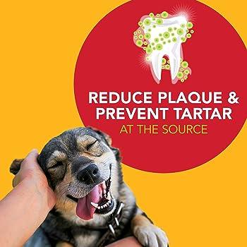 Petrodex Advanced Dental Care Enzymatic Dog Toothpaste, 6.2oz.