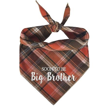 big brother. Pregnancy announcement Bandana Soon big sister