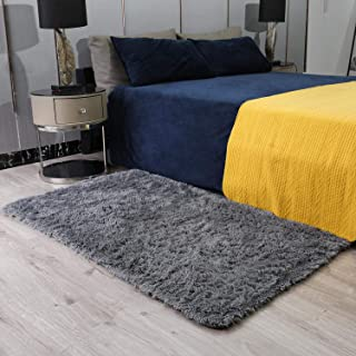 Ophanie Ultra Soft Fluffy Area Rugs for Bedroom, Luxury...