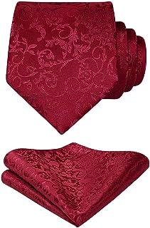HISDERN Cravatta Uomo e Fazzoletto Elegante Paisley Cravatta Set di Cravatte Classiche per il Matrimonio Festa Lavoro Laurea