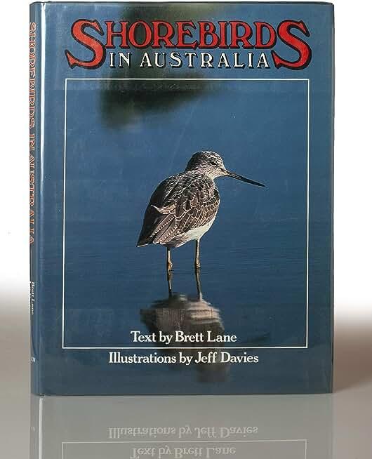 Shorebirds in Australia