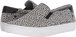 Gray Leopard