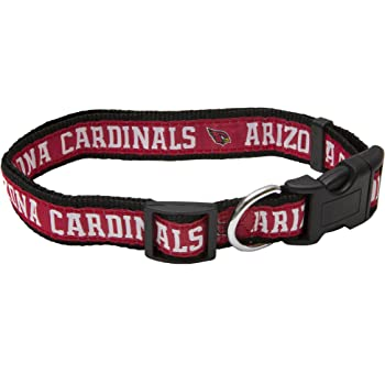 XS NFL San Diego Chargers Team Pet Collar