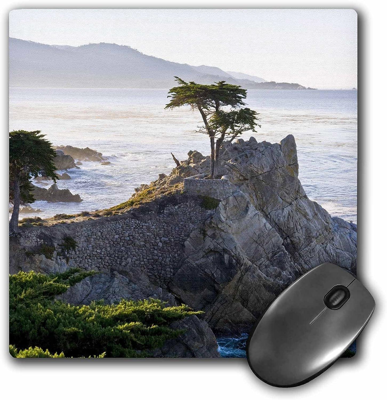 Choice 3dRose LLC 8 x 0.25 Inches 1 year warranty Mouse by Carmel T Pad California