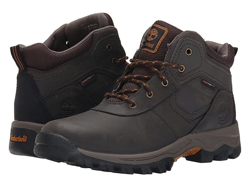 Timberland Kids Mt. Maddsen Mid Waterproof (Big Kid) (Dark Brown) Boys Shoes