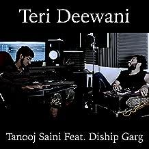 Teri Deewani (feat. Diship Garg)