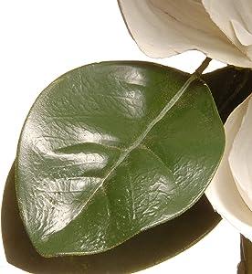 "National Tree 60"" Magnolia Garland"