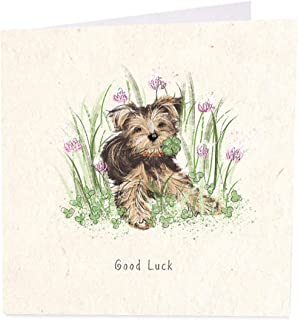 Dog and Clovers Good Luck Cute Female Artistic Good Luck Card from The A Day in the Life Range by Artbeat Greeting Card for Her AB-GC001188