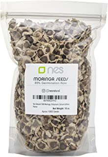 Nes Natural 1000 Moringa Oleifera Dried Seeds Pack | Nutritional, Antioxidant & Anti Inflammatory Drumstick Tree Edible Seeds | Rich In Vitamins, Minerals, Protein, Potassium, Calcium & More